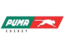 puma marketing jobs